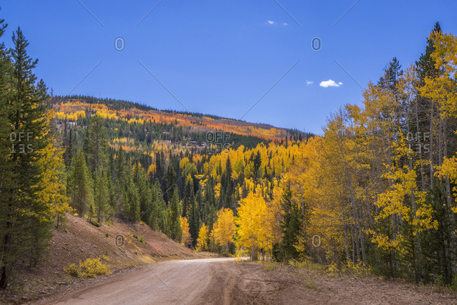 USA, Wyoming, trail in an autumn landscape, aspens and pines