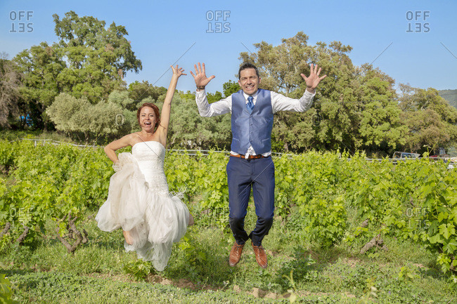 Vue d'un jeune couple de maries se rejouit heureux les bras dans l'air dans les vignes.
