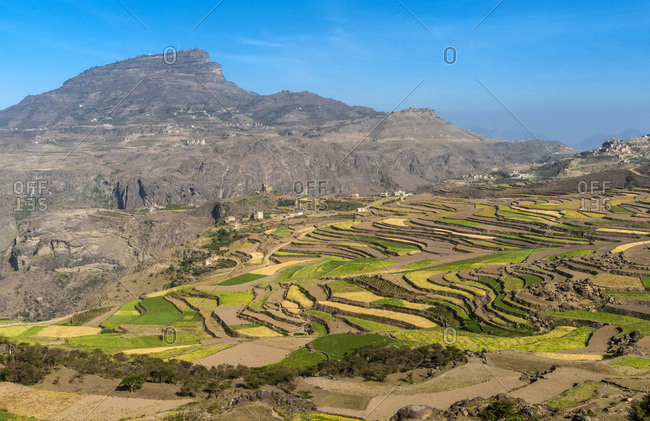 Middle East, Yemen, Center West, Jebel Harraz region (UNESCO World Heritage Tentative list), village and terrace cultivations (shooting 03/2007)
