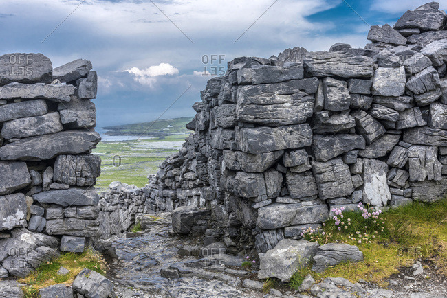Europe, Republic of Ireland, County Galway, Aran Islands, Inishmore Island, cliffs dug by the sea near the Dun Aengus prehistorical Ringfort site (Aonghasa) (1100 BC - 800 AC) (National Monument)