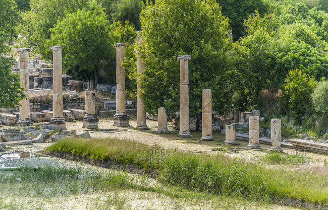 Turkey, Aphrodisias archeological Roman site (1st - 5th century), Tiberius portico's columns with ionic style capitals (UNESCO World Heritage)