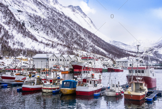 Norway - March 29, 2019: Norway, Tromso County, Senja Island, Fjordgard, Husoy cod port