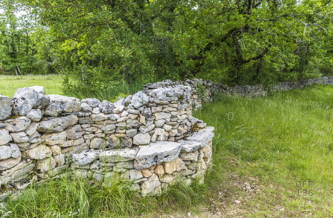 France, Lot, Causses regional Natural Park of Quercy, Natural Sensitive Space of Brauhnie, small stone wall in a ewes park with a bank