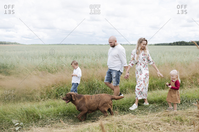 Family with Chocolate Labrador walking amidst oats field against sky