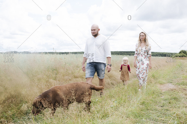 Parents and daughter with Chocolate Labrador walking amidst oats field against cloudy sky