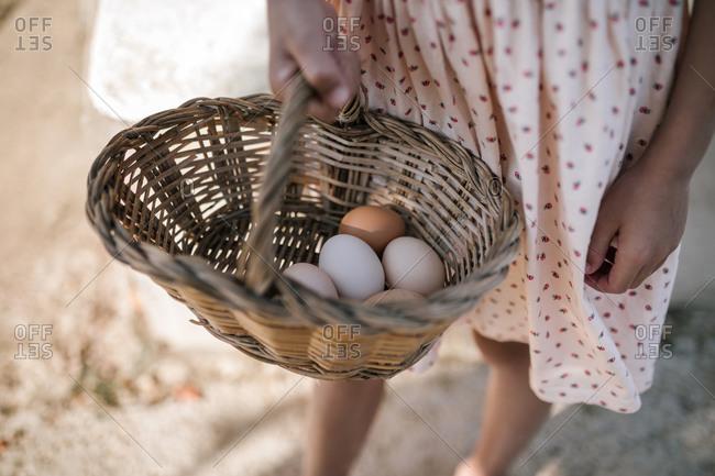 Girl holding wicker basket of eggs in chicken farm