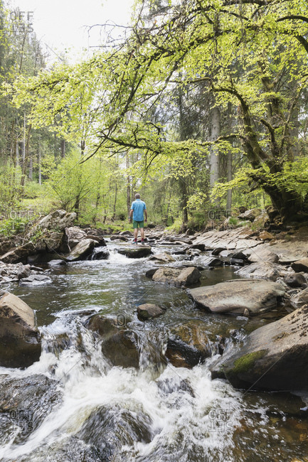 Senior man standing on rock in middle of Rur river flowing through High Fens - Eifel Nature Park in spring