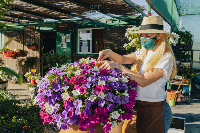 Female owner wearing mask and hat arranging flowers at plant nursery