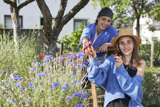 Smiling woman sharing strawberries with friend while sitting in garden