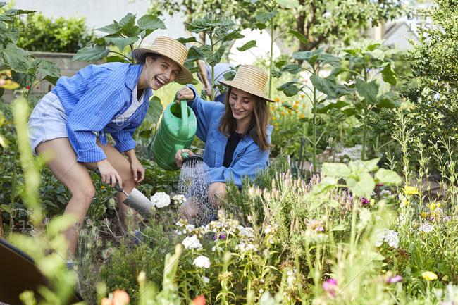 Happy female friends watering flowers in community garden