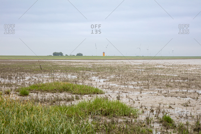 Germany- Lower Saxony- Wetland in Wadden Sea National Parks with wind turbines in distant background