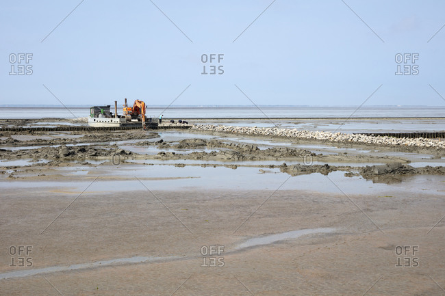 Germany- Lower Saxony- Earth mower working on stone wall on sandy coastal beach of North Sea