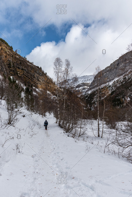Back view of unrecognizable traveler walking on covered pure white snow coarse mountain range in winter