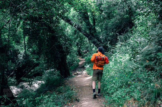 Traveling male hiker walking along trail in woods during summer vacation and looking away