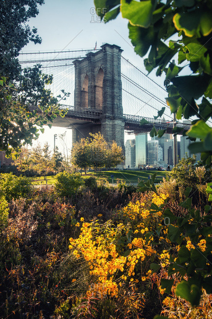 Majestic scenery of Brooklyn bridge over river in front of park on sunny day in New York