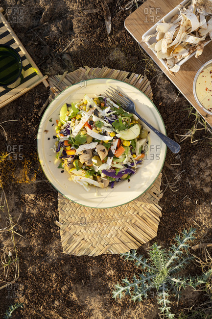 Top view of tortilla slaw dish on ground outdoors