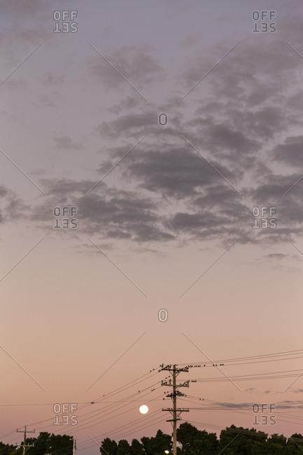 Birds on telephone lines under sunset sky
