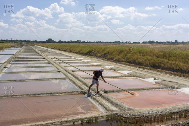 France, Nouvelle-Aquitaine, Les Portes-en   - July 12, 2018: Salt harvest, Les Portes-En-Re, Ile de Re, Nouvelle-Aquitaine , France