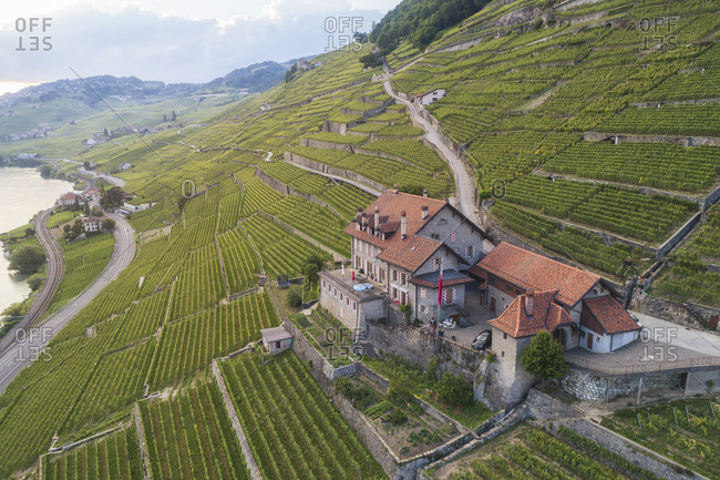 Vineyards and house on mountainside near Lake Geneva, Lavaux, Vaud Canton, Switzerland