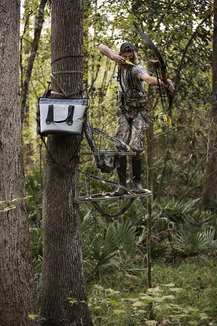 Deer hunter with bow and arrow aiming, Bear Creek Reserve, Georgia, USA