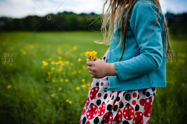 Young girl picking a bouquet of yellow wildflowers