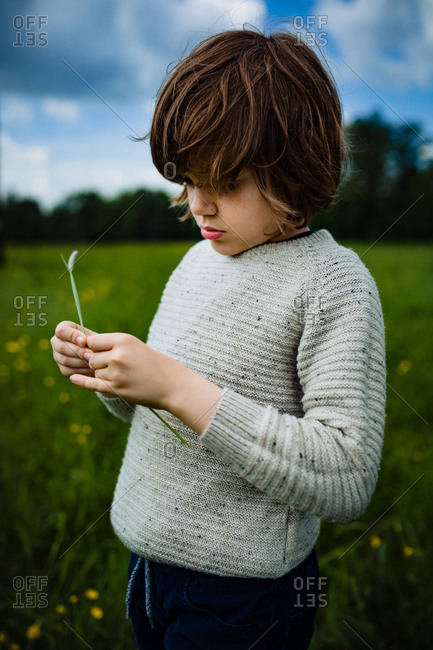Boy standing in a field playing with long stem of grass