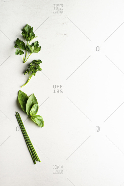 Herbs, Flatleaf and curly parsley, Basil & Chives