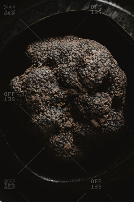 Dark photo of a truffle highlighting texture