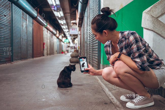 Side view of young Asian female in casual clothes taking picture of stray black cat on smartphone in empty underground passage with closed shutters