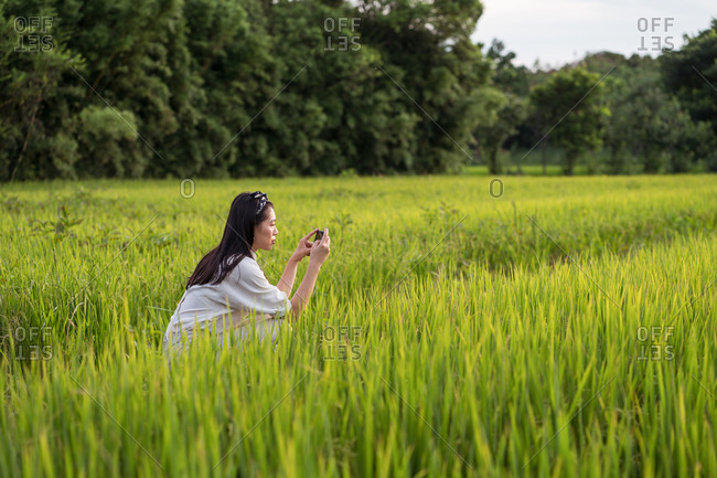 Side view of Asian female crouched taking photo of green rice field while relaxing during weekend in summer