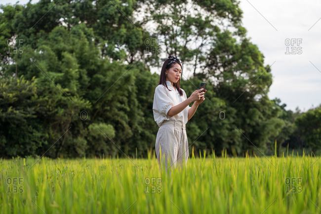 Side view of Asian female standing taking photo of green rice field while relaxing during weekend in summer