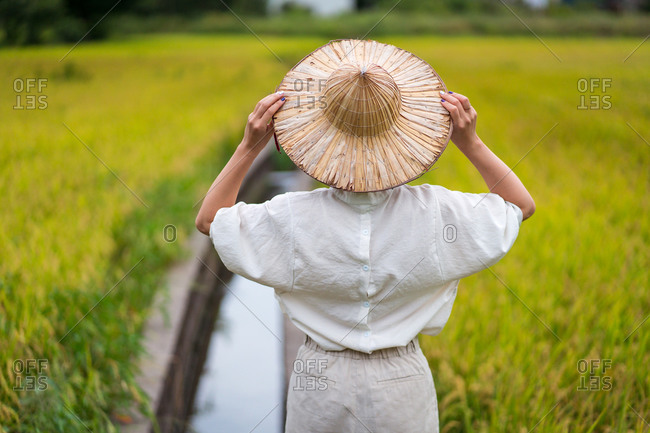 Back view of unrecognizable female in cone hat contemplating rice field in countryside in summer