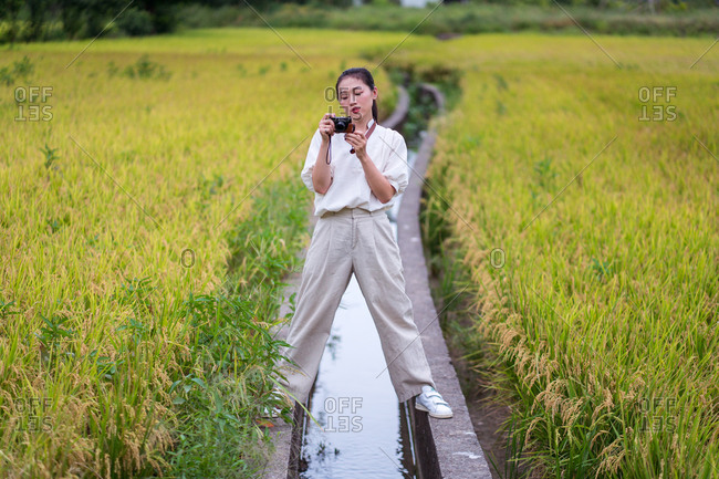 Calm ethnic female standing in rice field and taking pictures on vintage photo camera