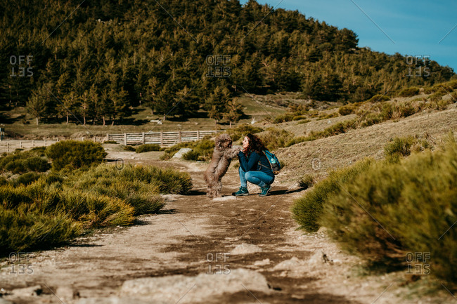 Side view of happy female smiling crouched with fluffy Labradoodle while walking along path on sunny day in Puerto de la Morcuera mountains in Spain