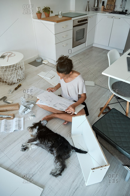From above concentrated young female sitting on floor near dog and reading paper instruction while installing new furniture in modern apartment