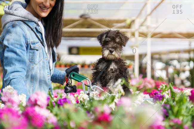 Young girl buying flowers and seasonal plants in a nursery with her dog