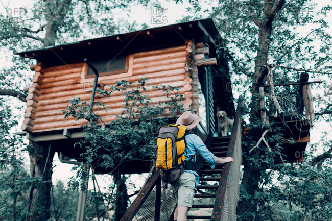 Male tourist with backpack walking up on wooden steps of tree house and stroking fluffy dog during vacation in forest