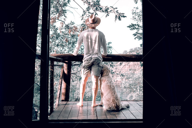 Back view of male traveler standing on wooden balcony with fluffy dog and enjoying morning in forest during summer vacation