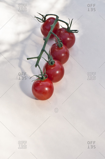 Top view of bunch of ripe red cherry tomatoes with green stems placed on white background