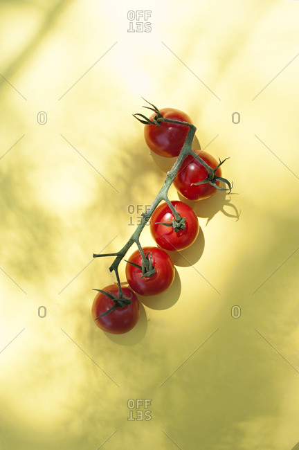 Top view of bunch of ripe red cherry tomatoes with green stems placed on yellow background