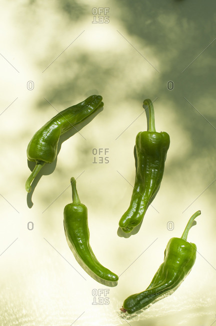 Top view of whole fresh green chili peppers placed on surface with sunlight and shadows