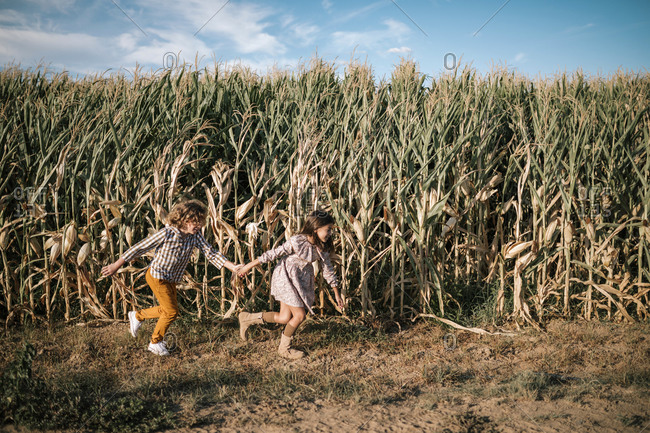 Girl and boy holding hands running through some cornfields