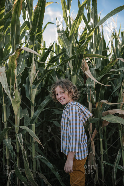 Portrait of curly blond hair boy in a corn field