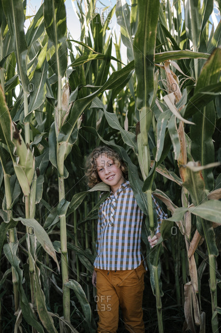 Portrait of curly-haired blond boy coming out of corn fields