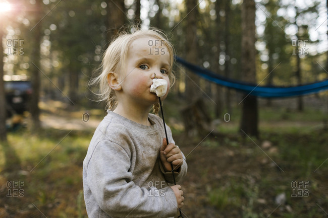 Portrait of girl (2-3) eating marshmallow in forest, Wasatch Cache National Forest