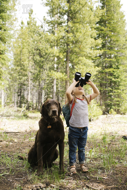 Girl (4-5) looking through binoculars in forest, chocolate labrador sitting next to her, Wasatch-Cache National Forest