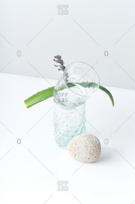 Still life with aloe leaf balancing on glasses