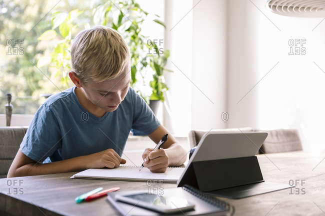 Male teenager studying at home