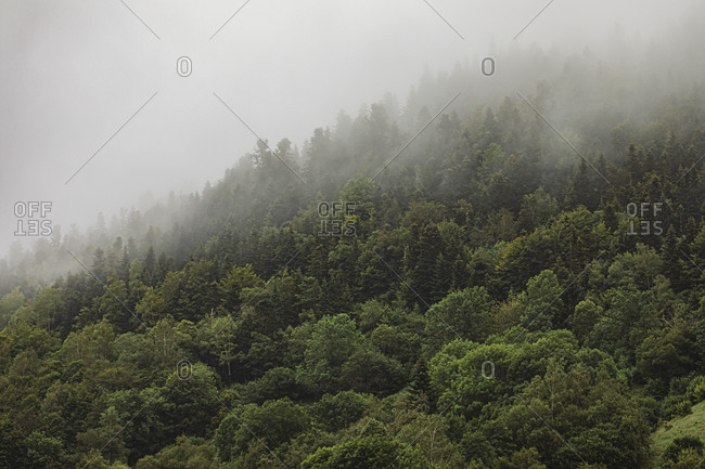 Mountain landscape with fog over French mountain