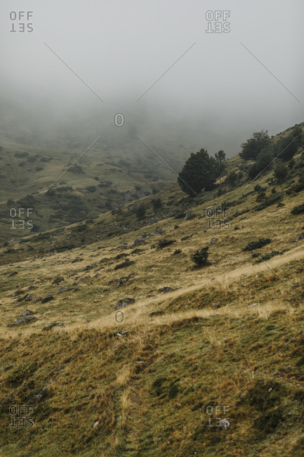 Green hillside in the Midi Pyrenees with dense fog